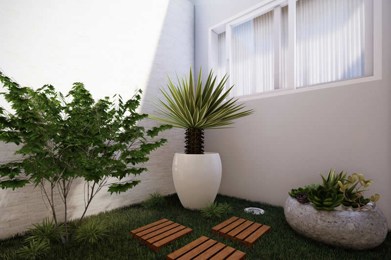 Practical and functional home plant